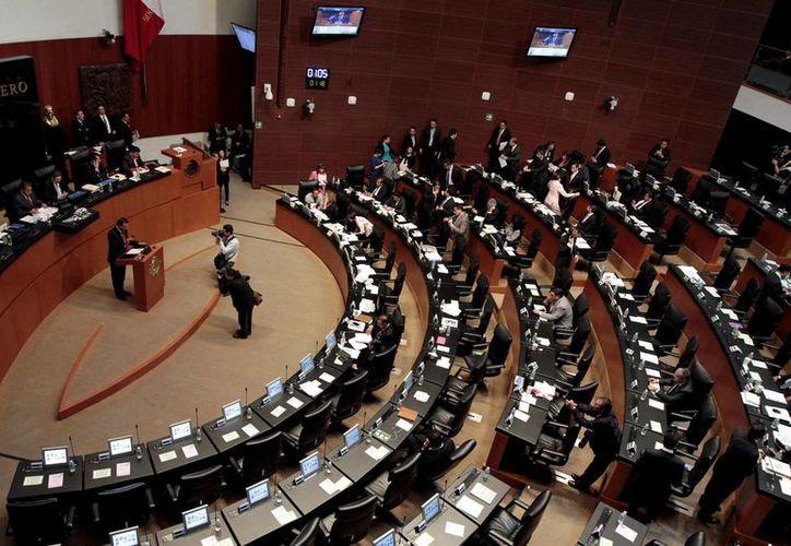 El Senado circuló el borrador de la Ley General de Transparencia, Acceso a la Información y Protección de Datos Personales. (Archivo/Notimex)