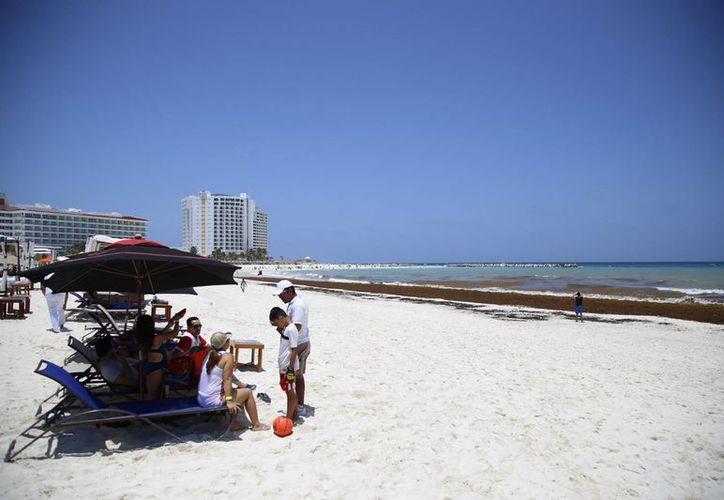 El sargazo impide a los bañistas entrar al mar. (Israel Leal/SIPSE)