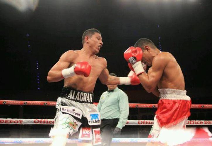 La pelea por el título entre Miguel Berchelt y Francisco Vargas se llevará a cabo el próximo 28 de enero en Indio, California.(Foto tomada de Facebook/Alacrán Berchelt)