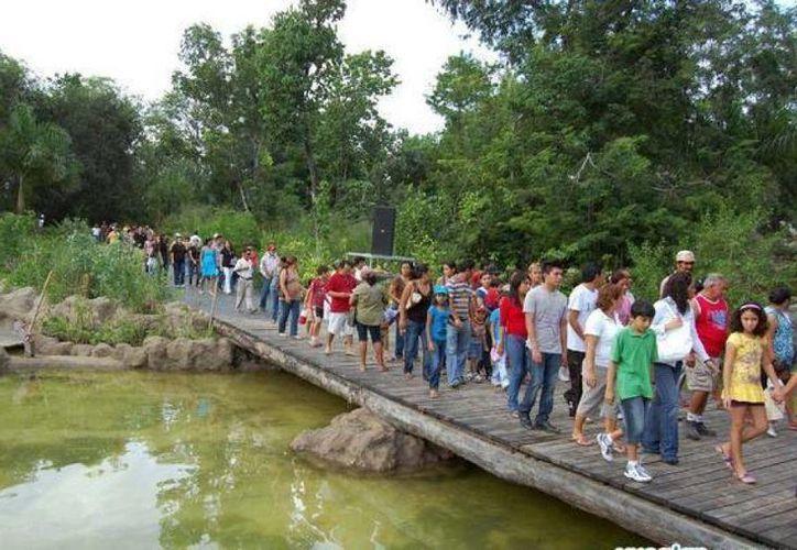 El zoológico Payo Obispo es una atracción recreativa y cultural para los chetumaleños y visitantes de otras regiones. (Redacción/SIPSE)