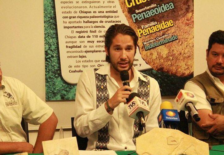 Estos registros representan un logro importante en materia paleontológica para Chiapas. (twitter.com/semahn)