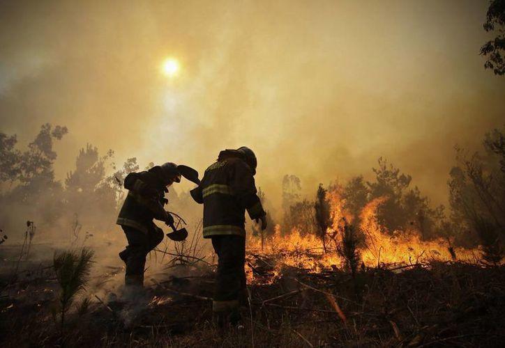 Bomberos cavan trincheras en un esfuerzo por detener un incendio forestal en Hualañe, comunidad de Concepción, Chile, uno de los peores desastres con fuego en la historia de ese país. (Alejandro Zoñez / Aton vía AP)