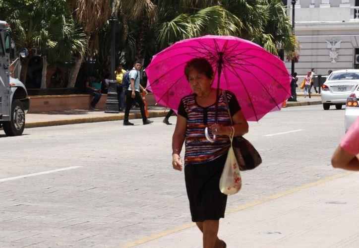 Para este sábado se esperan temperaturas máximas que oscilarían entre los 33.0 y 37.0 grados Celsius en Yucatán. (José Acosta/Milenio Novedades)
