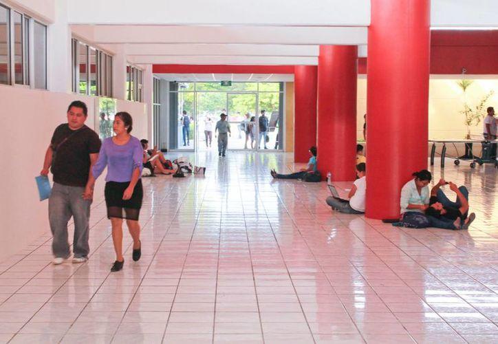 Los universitarios que acreditaron todas las asignaturas ya están de vacaciones, a diferencia de los que adeudan materias. (Archivo/SIPSE)