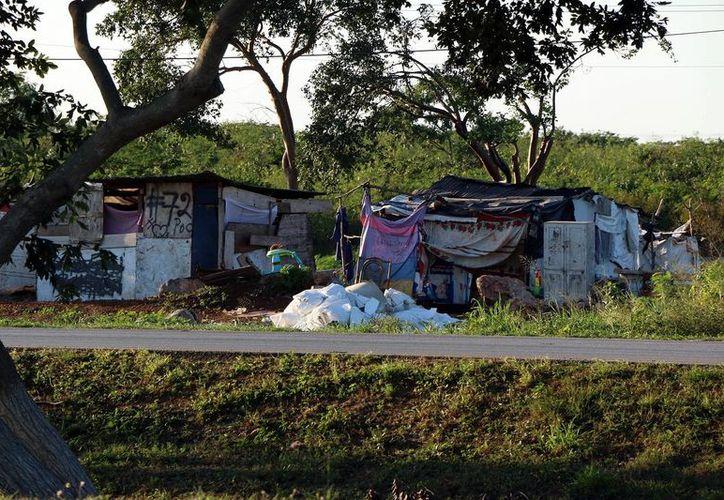 El problema de los 'paracaidistas' en terrenos del Periférico de Mérida será resuelto por el Ivey en el primer semestre de 2016. (SIPSE)