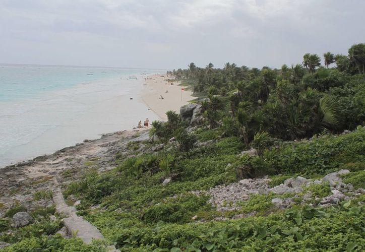 Despojaron de tierras con documentación falsa a legítimos propietarios. (Sergio Orozco/SIPSE)