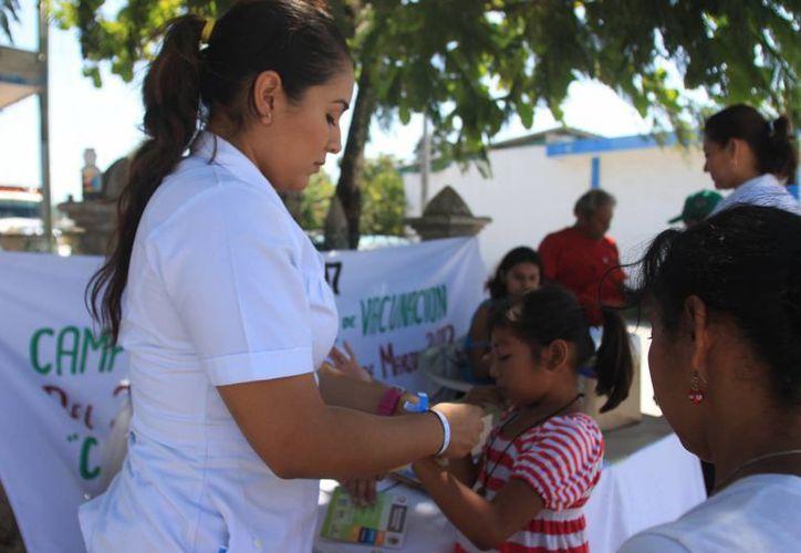 Durante la jornada también se distribuirán 79 mil 336 sobres de Vida Suero Oral. (Eddy Bonilla/ SIPSE)