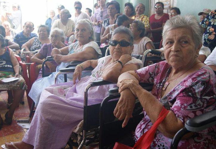 Un total de mil 50 pesos al bimestre recibe como apoyo cada abuelito de Progreso beneficiado. (Manuel Pool/SIPSE)