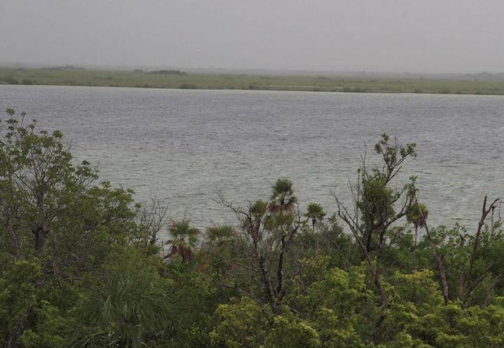 Proponen un polígono que sea área natural protegida. (Luis Soto/SIPSE)