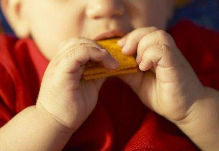 Actualmente se ha quitado el mito que corría de boca en boca para no ofrecer a los niños de seis meses a un año de vida, alimentos excepto frutas y verduras. (Contexto/Internet)