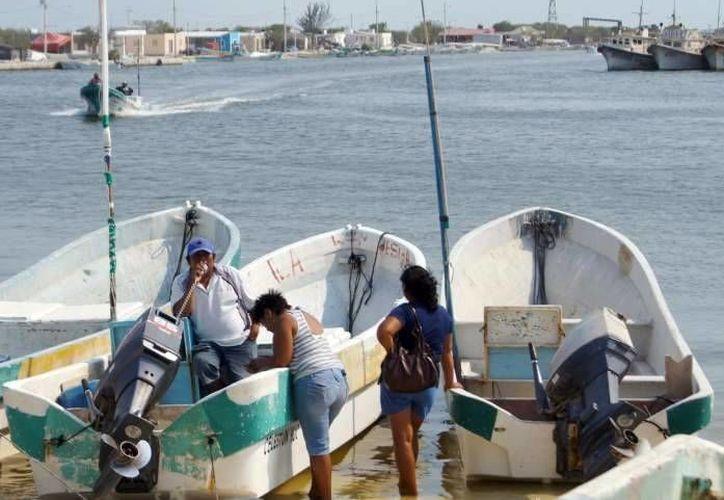 Apenas reabrieron los puertos, los pescadores se hicieron a la mar a fin de recuperar los días perdidos. (SIPSE)