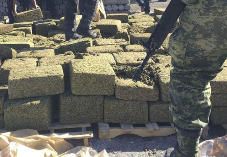 Operación limpieza decomisa 2.2 toneladas de mariguana en Michoacán (Cuartoscuro)
