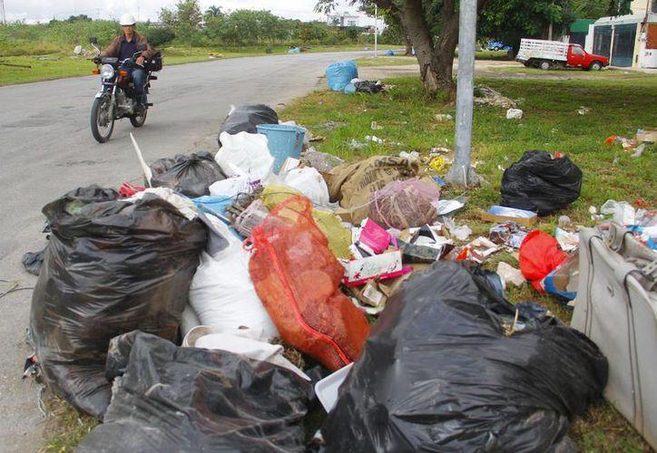 Los acumulamientos de basura se observan en varias zonas de Mérida. (Milenio Novedades)