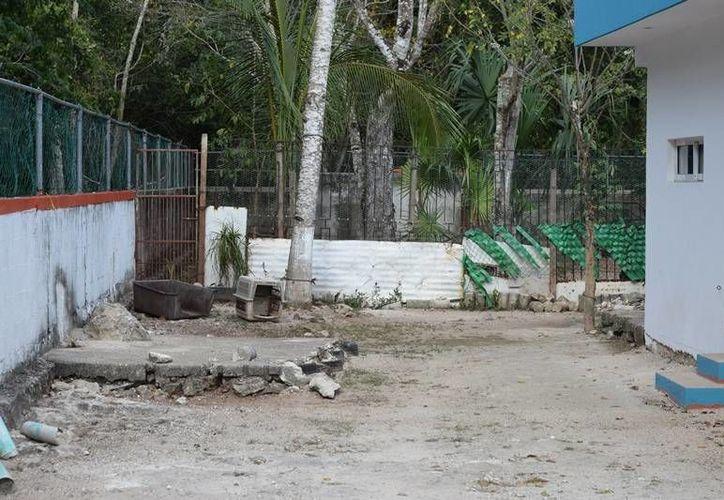 Las instalaciones de Control Animal en Cozumel permanecen vacías. (Foto: Gustavo Villegas)