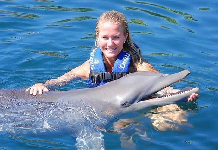 La institución fue reconocida por el trato que le da a sus delfines en sus delfinarios. (Contexto/Internet)