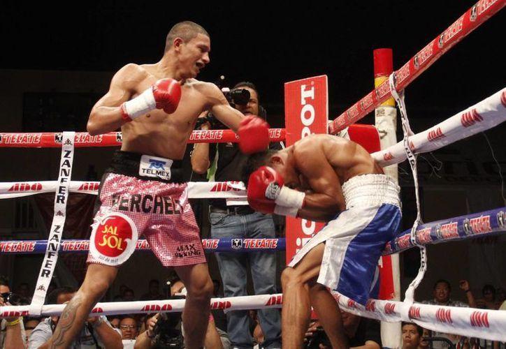 """El """"Alacrán"""" dominó durante los dos raunds que duró la pelea. (Juan Carlos Albornoz/SIPSE)"""