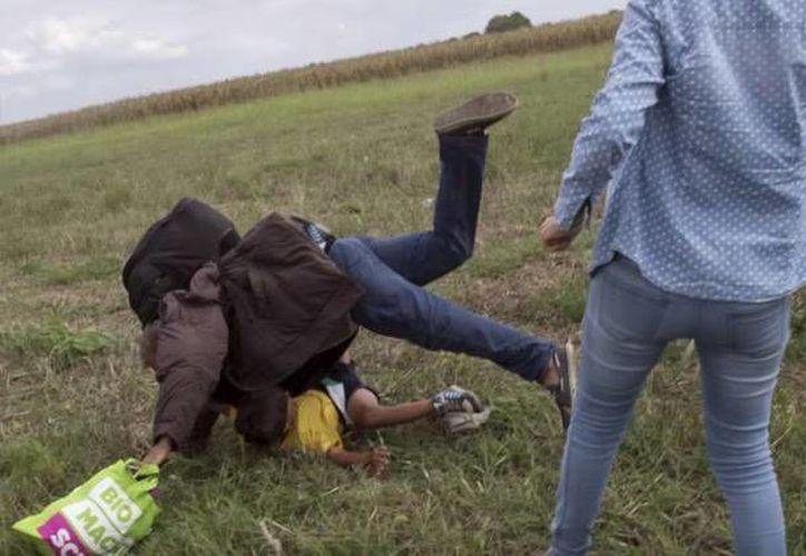 El ciudadano árabe que mientra cargaba a su hijo fue trastabillado por una periodista en Hungría, podría vivir y trabajar en España. (rt.com)