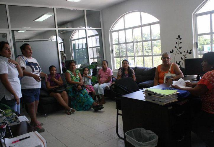 Los resultados del censo serán documentados con reportes y fotografías. (Loana Segovia/SIPSE)
