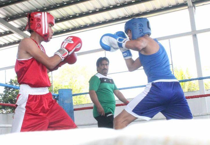 Los jóvenes boxeadores dieron peleas de exhibición en la inauguración oficial del proyecto del boxeo.(Milenio Novedades)