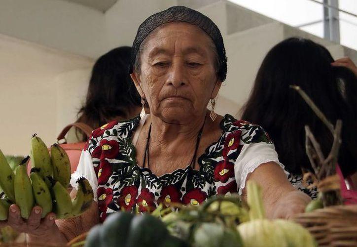 El Tianguis del Mayab ofrece productos que favorecen la salud, el cuidado del medio ambiente, el rescate de nuestra cultura gastronómica. (Redacción/SIPSE)