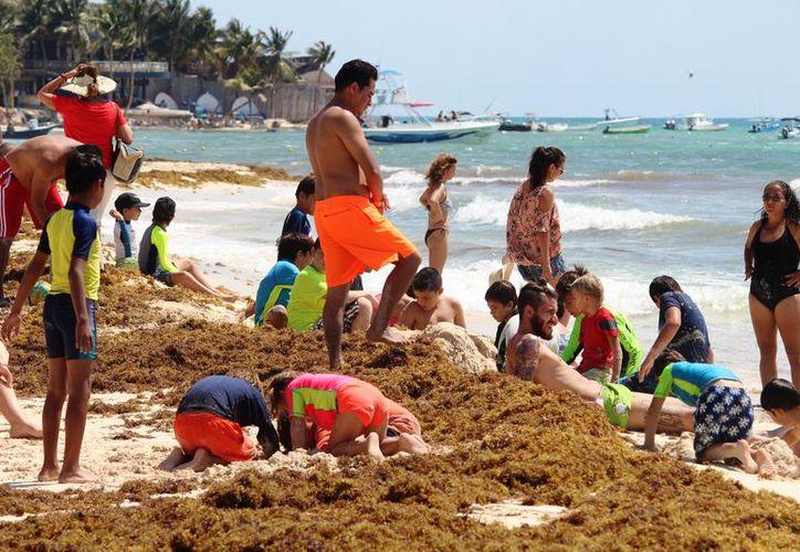 Prestadores de servicios turísticos indicaron que urge que se limpien las playas. (Octavio Martínez/ SIPSE)