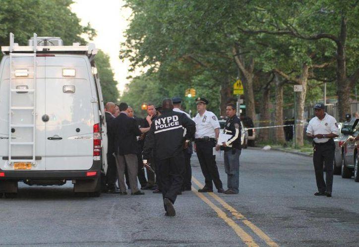 La zona donde ocurrió el ataque carece de cámaras de seguridad que pudieron haber captado al atacante. (nydailynews.com)