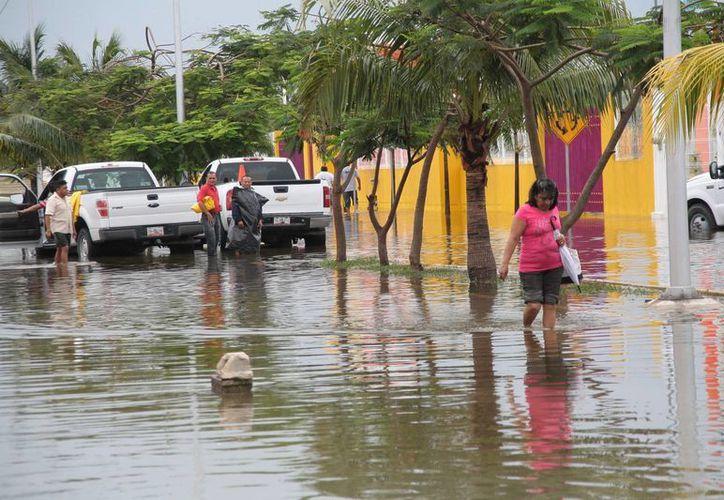 En el municipio no hay censo de daños por lluvias. (Julián Miranda/SIPSE)