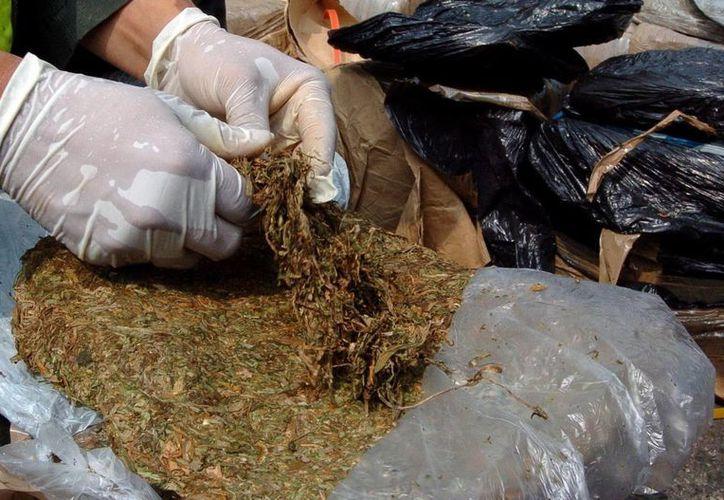 La droga estaba distribuida en 1,251 placas y oculta en un doble fondo del vehículo. (EFE/Archivo)