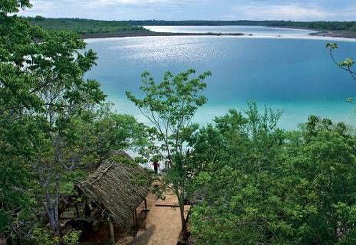 La Selva Maya es uno de los tesoros de Quintana Roo que se busca preservar. (Contexto/Internet)