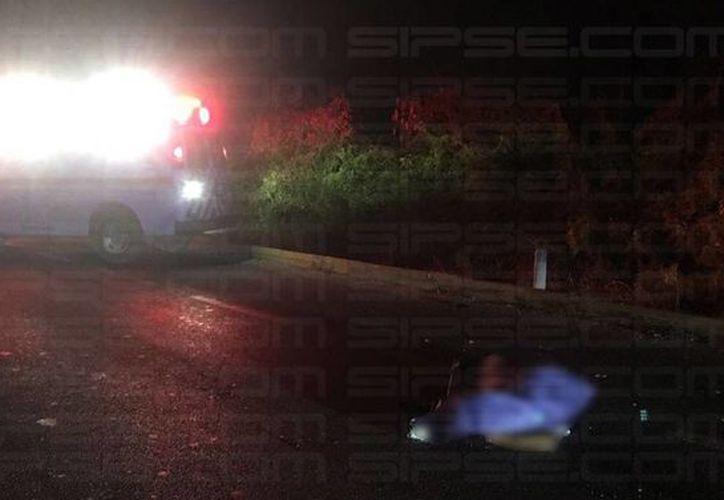 Este es el primer hecho de muerte por atropellamiento en lo que va del año, en el tramo de esa carretera. (Foto: Redacción/SIPSE)