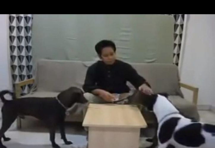 En el video, Maznah aparece lavando las patas de sus mascotas durante la festividad religiosa de Eid al-Fitr. (YouTube)