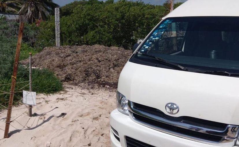 Los hechos se registraron en los arenales de la playa Punta Piedra en Tulum. [Foto: De la Redacción]