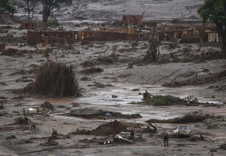 Fotografía tomada el pasado 8 de noviembre en la que se registró a un grupo de bomberos buscando víctimas en entre el lodo vertido por la compañía Samarco, en la localidad de Bento Rodrigues, distrito de la ciudad de Mariana, Brasil. (EFE/Archivo)