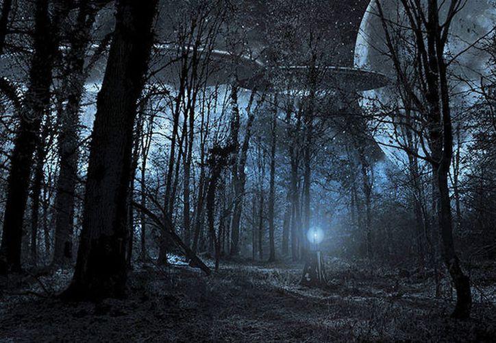 """A pesar de que """"disponemos de tanta tecnología"""", existen """"pocas fotografías de los supuestos extraterrestres"""". (Pixabay)"""