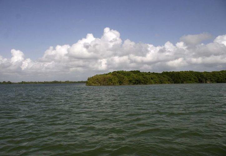 La propuesta de Ley General de Aguas será modificada para hacer estudios y monitoreos en los acuíferos. (Harold Alcocer/SIPSE)