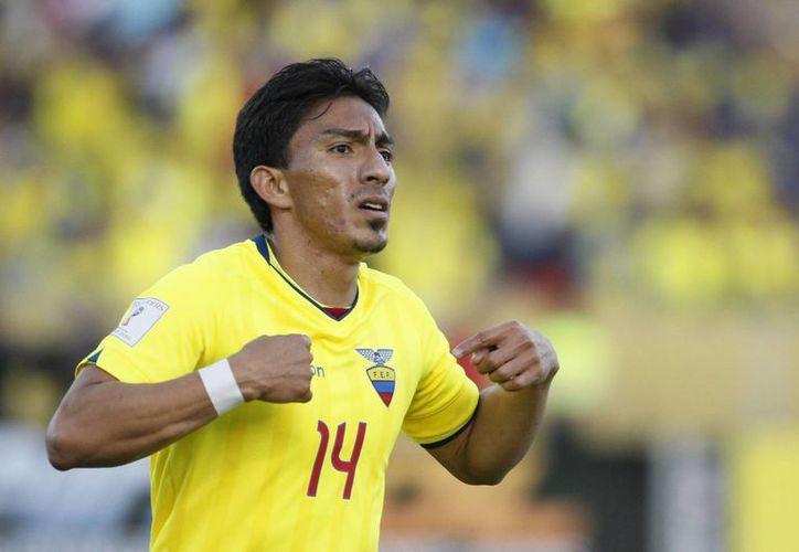 El ecuatoriano Ángel Mena(foto) fue el autor del empate en los últimos minutos del encuentro mundialista.(AP)