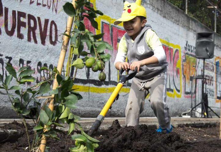 El objetivo es mejorar la calidad de vida de la población. (Excelsior)