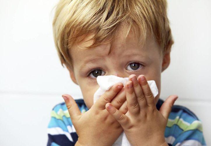 Cuando los niños presentan baja en las plaquetas, existe una tendencia a sangrar en cualquier parte del cuerpo, principalmente en la nariz o en las encías. (comatmatronas.es)