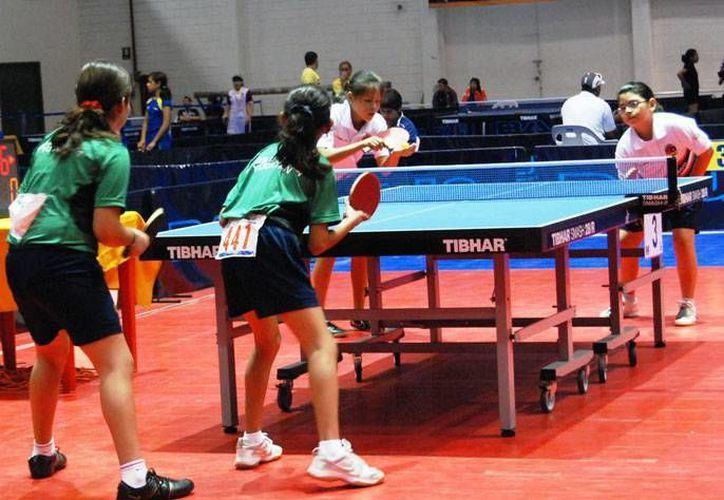Atletas locales fueron clasificados para el Campeonato Mundial, con sede en Egipto, en septiembre próximo. (SIPSE)