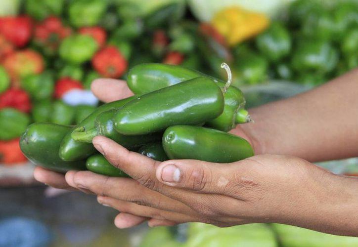 En años anteriores se cultivaban en Quintana Roo alrededor de tres mil hectáreas. (Benjamín Pat/SIPSE)