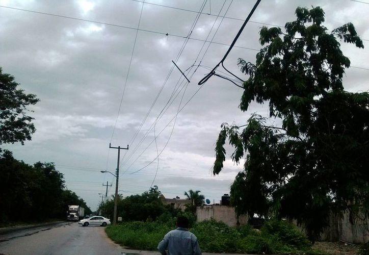 Calles de las colonias Ejidal y Mayapax están a oscuras debido al robo de cable del alumbrado público. (Rossy López/SIPSE)
