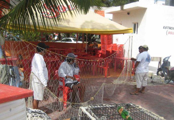 Los pescadores sufren problemas económicos por mala temporada de captura de langosta. (Lanrry Parra/SIPSE)