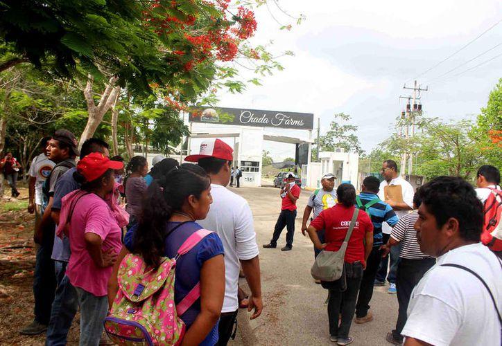Los trabajadores, permanecieron en el sitio hasta las dos de la tarde, el director de Recursos Humanos, Goche Canché, sólo salió a invitarlos a que pasen a laborar. (Foto: Jesús Caamal / SIPSE)