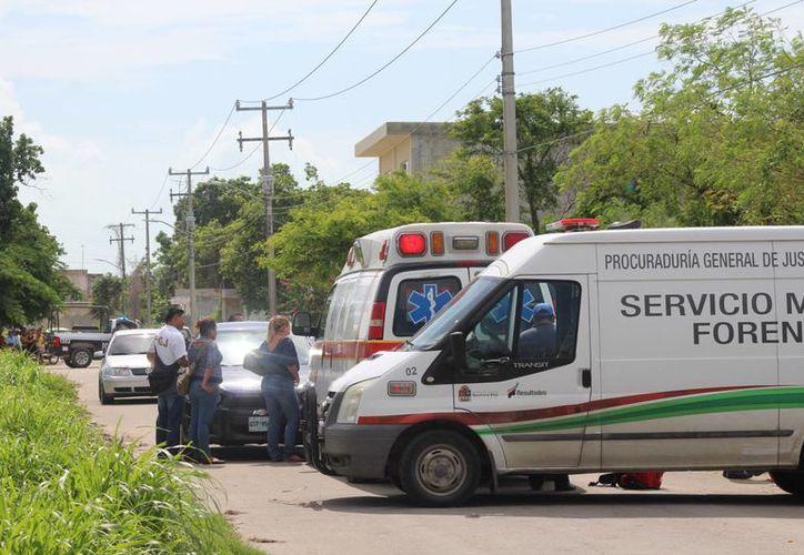 Fue hallada en un predio ubicado en la calle Payo Obispo. (Carlos Horta/ SIPSE)