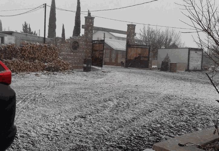 La zona montañosa de La Rumorosa registró caída de nieve. (@chaac_tlaloc)