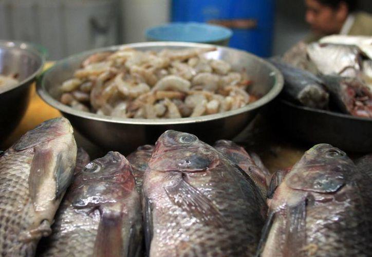 La venta de pescados y mariscos en la capital se mantiene favorable para comercializadores. (Enrique Mena/SIPSE)