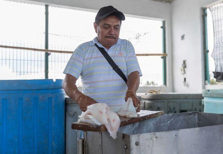 Anselmo Canul López (foto) y  José Canché Quintal son dos ejemplos de beneficiarios del programa Peso a Peso del Gobierno estatal. (Fotos cortesía del gobierno)