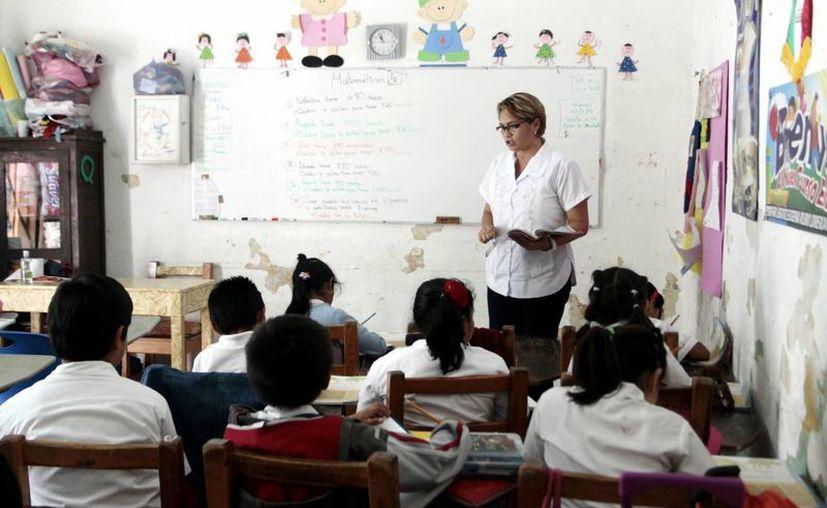 La prueba Enlace será aplicada a alumnos de primaria, secundaria y preparatoria. (SIPSE)