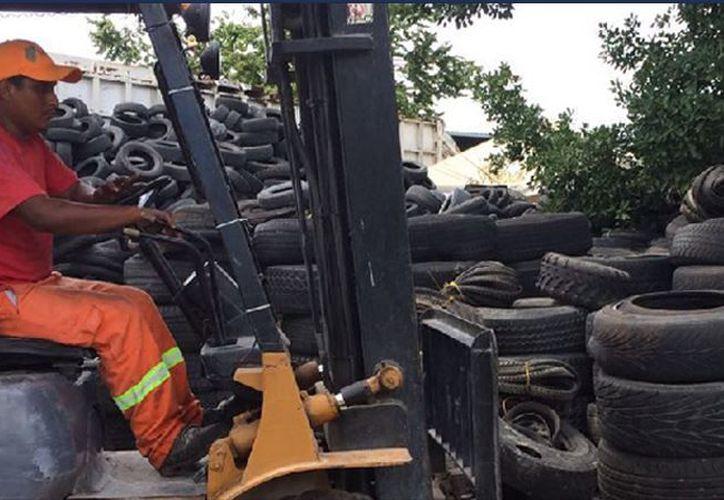 Los neumáticos se enviarán a co-procesamiento por la empresa Geocycle México. (Foto: Redacción)