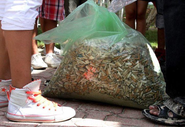 Una considerable cantidad de colillas de cigarrillos fueron retiradas de la costa solidarense, gracias a la extraordinaria participación de la propia ciudadanía. (María Mauricio/SIPSE)